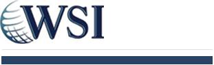 WSI - We Simplify the Internet